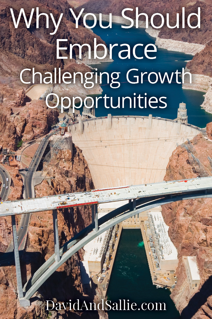 Why You Should Embrace Challenging Growth Opportunities Pin